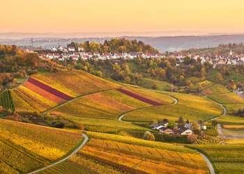 Tijdens de Coronacrisis naar Duitsland – Dit zijn de veiligheidsregels