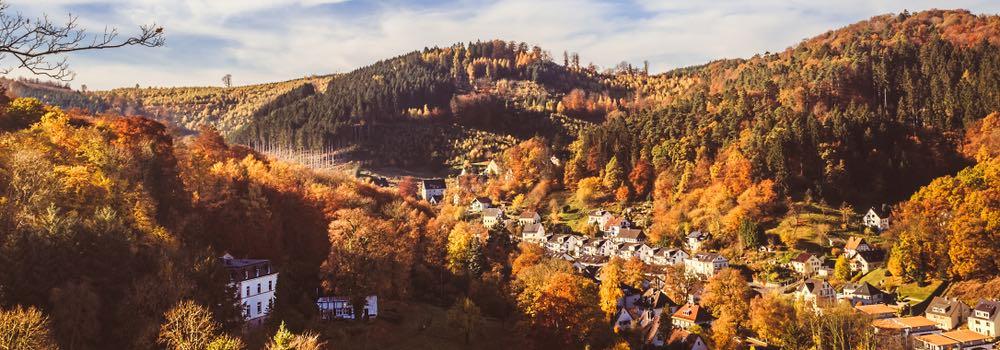 uitzicht over hagen in de herfst